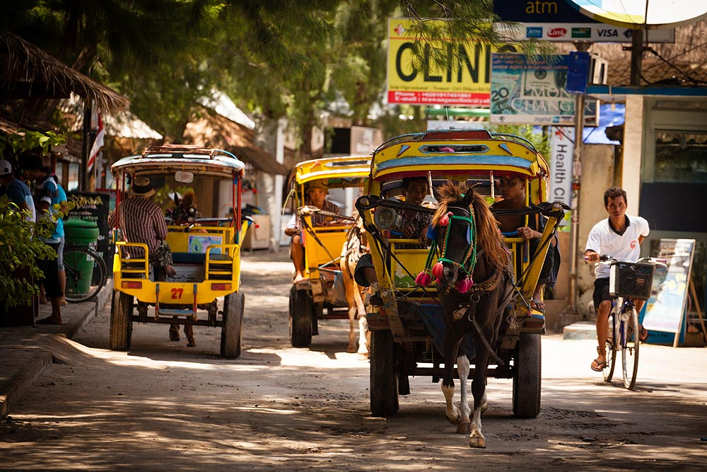 One of the selling points about Gili Trawangan is the total lack of anything powered by a gas or electric motor. In exchange for no motorbikes or cars, you'll get lots of overpriced horse carriages. They'll charge you as much for a 100 yard jaunt as a Bali taxi charges for a ten mile run to the airport.