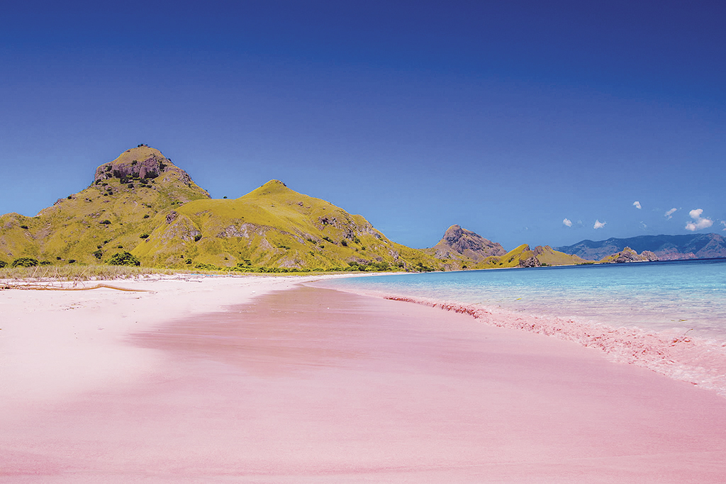pink-beach-indonesia