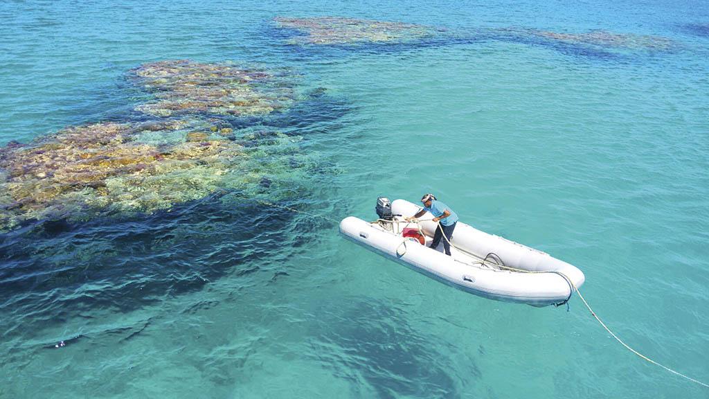 Лагуна у відкритому морі, де живе популяція дельфінів