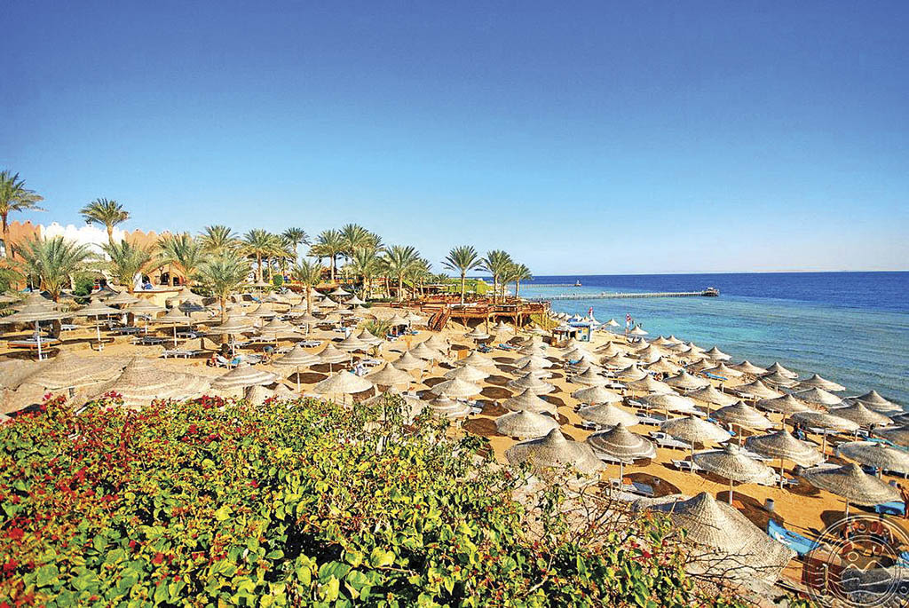 Кораловий риф знаходиться поруч із готелем