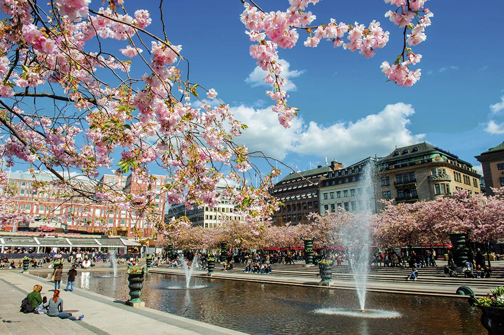 У травні шведська столиця розквітає: центральний парк Кунгстредгорден