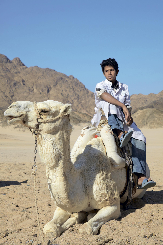 !!! egypt 6602