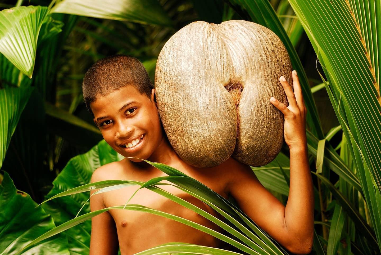 Coco De Mer - найбільше насіння в світі